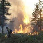 Montana_wildfire_burn-Credit-USFWS-150x150