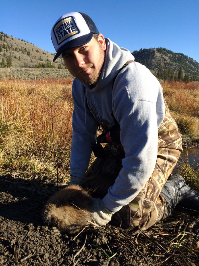 Colton Langell with beaver at Cache Creek in Gallatin drainage