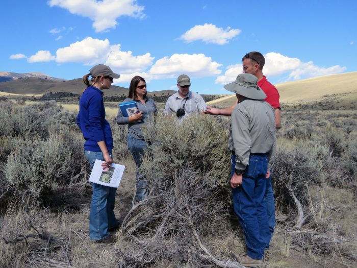 Shrub short course, Sept 23-25, 2015