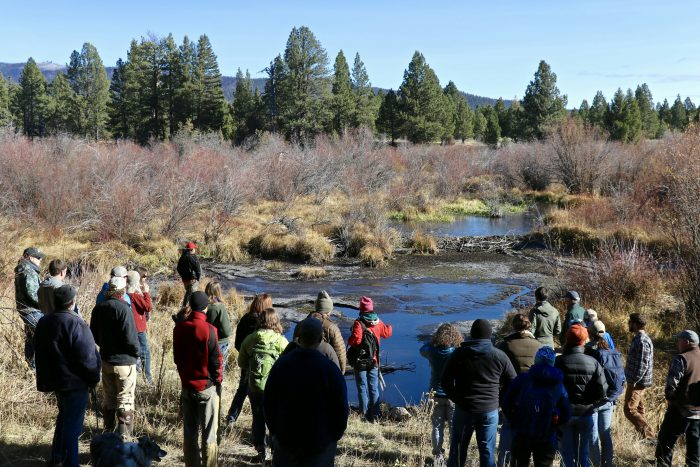 Participants of the Riparian Restoration in Western Montana - Role of Beavers Workshop 2